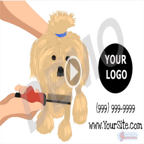 Dog Grooming Promotional Videos Extreme Marketing Innovations